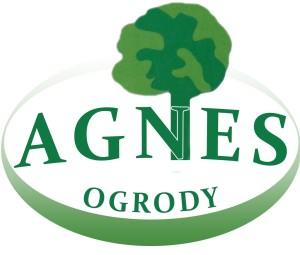 logo agnesa